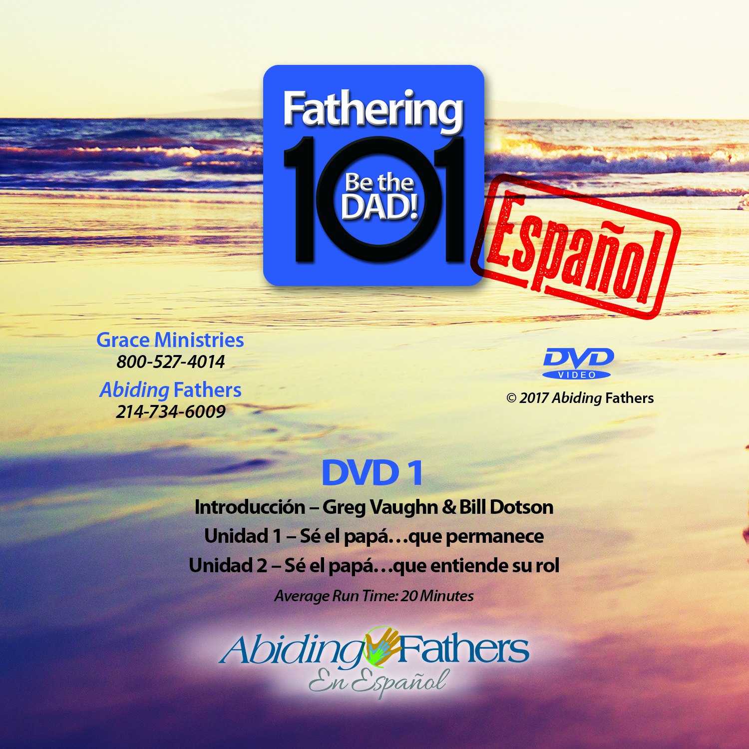 Be the Dad Spanish DVD Set
